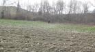 продава, Земеделски имот, 5016 m2 Благоевград област, гр.Сандански, 4700 EUR